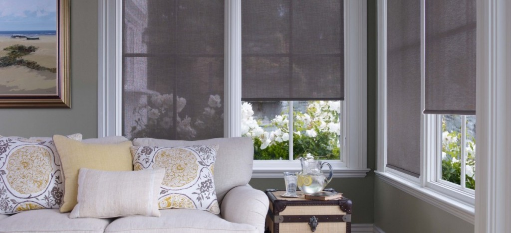Pleated Shades Vs. Honeycomb Shades…