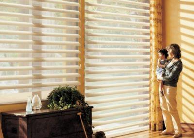 Pirouette Window Shadings-Alabama (6)