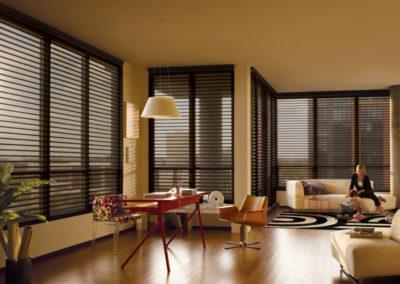 Silhouette Window Shadings-alabama (2)