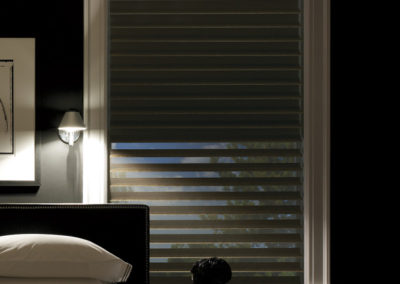 Silhouette Window Shadings-alabama (4)